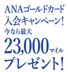 anaキャンペーン